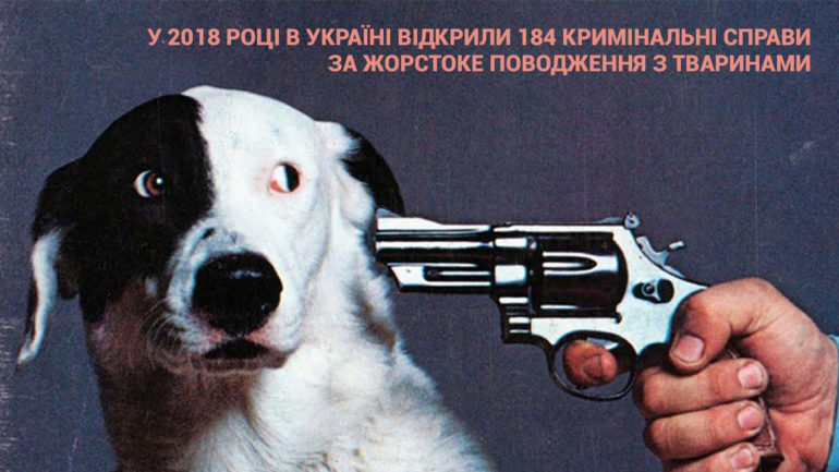 собака фото жорстоке поводження