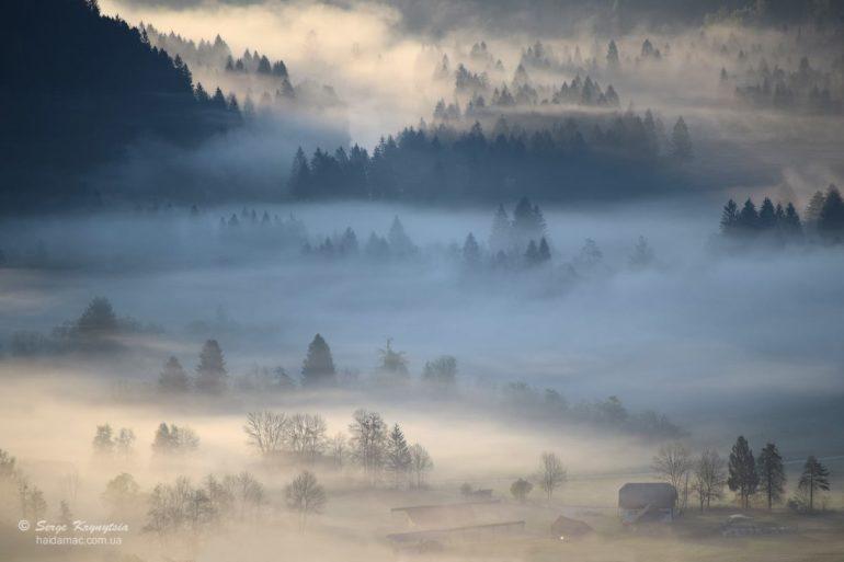 Туманний ранок. Словенія Фото Сергія Криниці