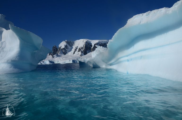 фото Антарктиди