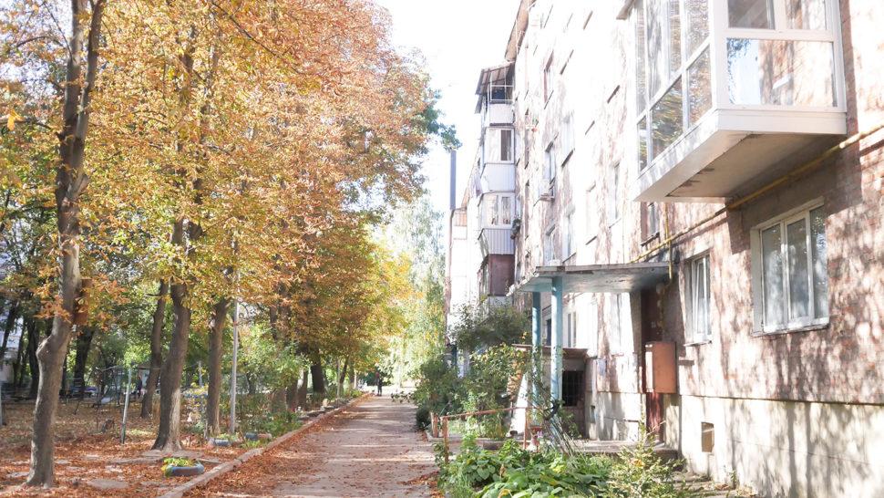 фото черкаського двору Артема Чеха